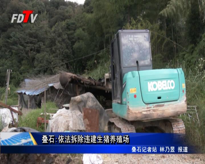 叠石:依法拆除违建生猪养殖场