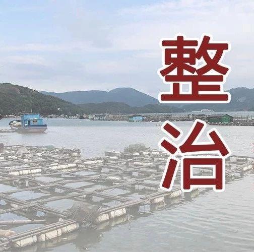 """福鼎:""""放假不停工""""推进海上养殖综合整治"""