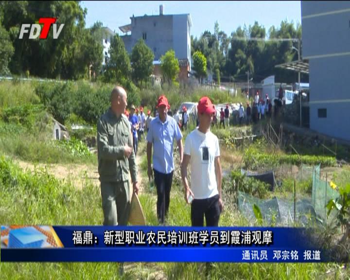 福鼎:新型职业农夫培训班学员到霞浦观摩