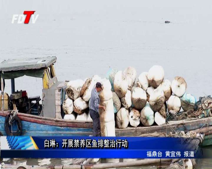 白琳:展开禁养区鱼排整治举措
