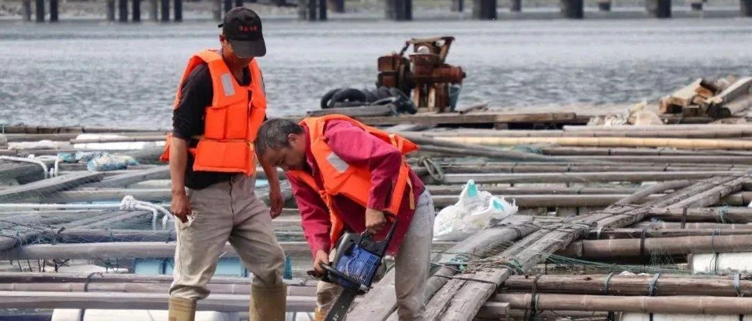 白琳展开禁养区渔排整治举措,已清退285口!