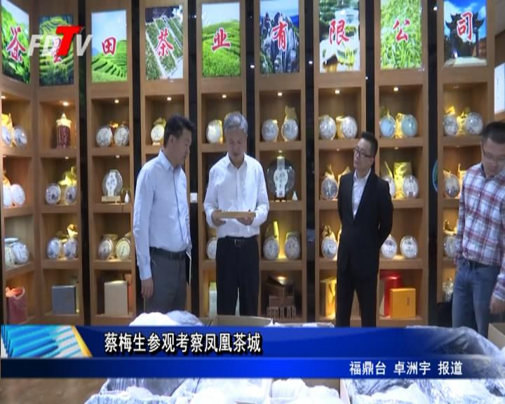 蔡梅生参观考察凤凰茶城