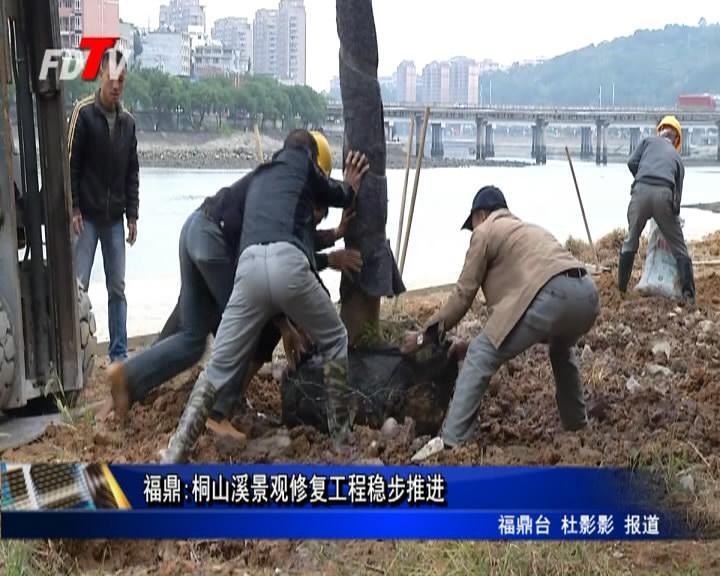 福鼎:桐山溪景观修停工程稳步推进