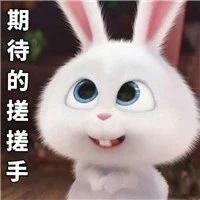 剧透,明天老健会开幕式的第一个表演节目来自福鼎!期待吗?