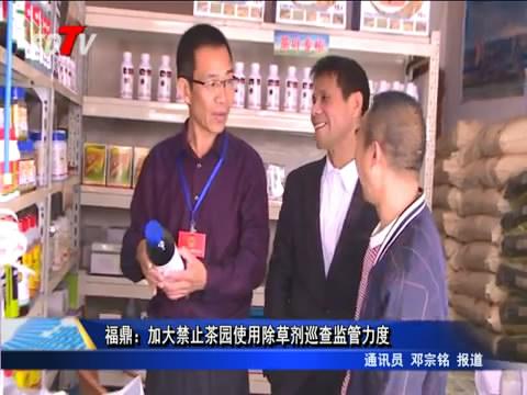 福鼎:加大禁止茶园使用除草剂巡查监管力度