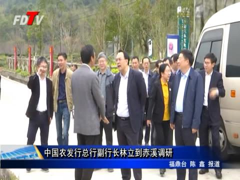 中国农刊行总行副行长林立到赤溪调研