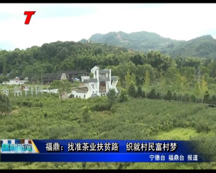 福鼎:找准茶业扶贫路  织就村民富村梦