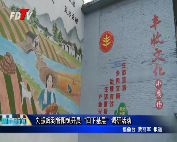 """刘振辉到管阳镇展开""""四下下层""""调研运动"""