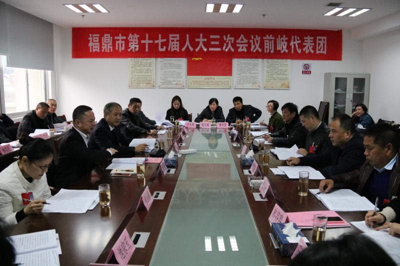 蔡梅生参加市十七届人大三次会议代表团分组审议