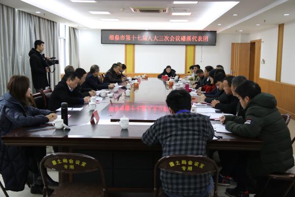 蔡梅生参加代表团分组审议