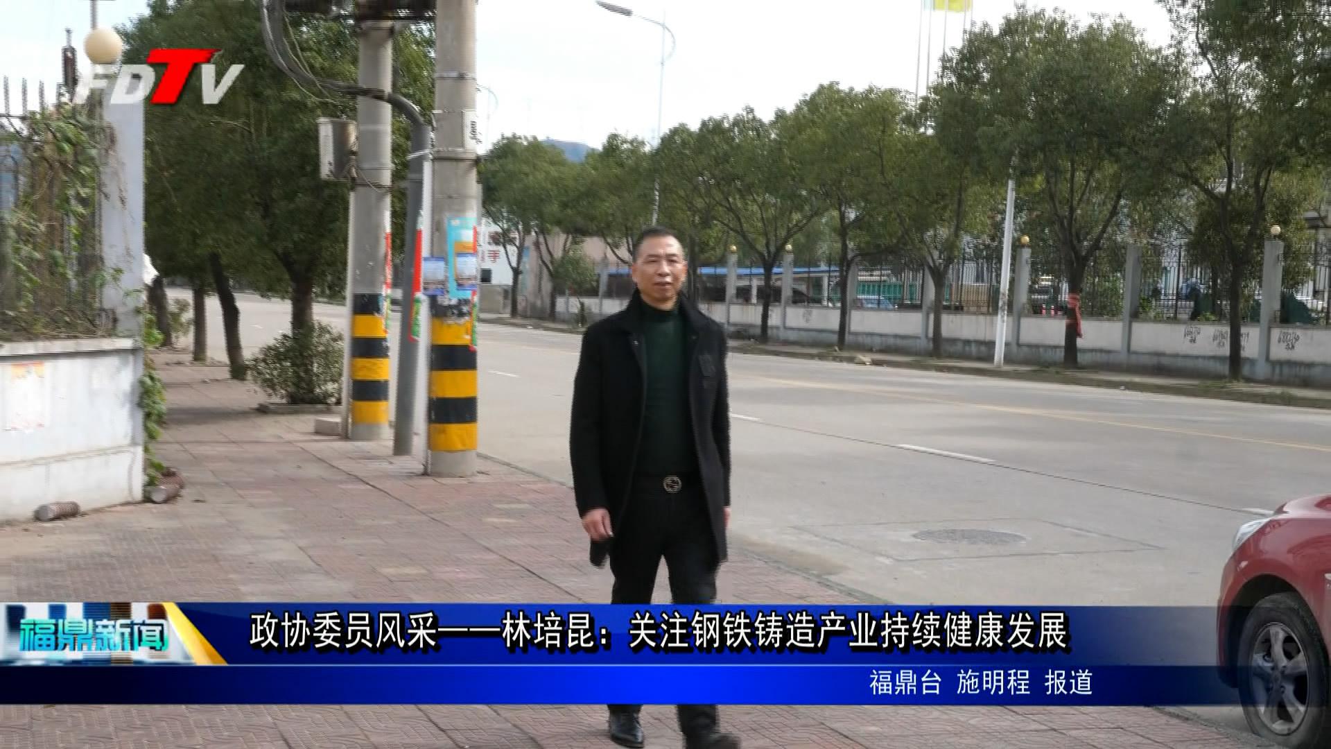政协委员风范—— 林培昆:存眷钢铁铸造财产连续康健生长