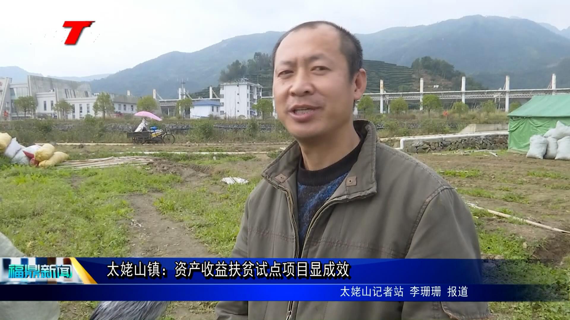 太姥山镇:资产收益扶贫试点项目显结果