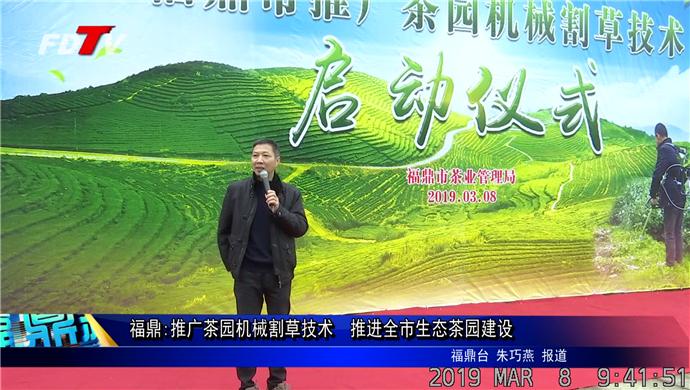 福鼎:推广茶园机械割草技术  推进全市生态茶园建设