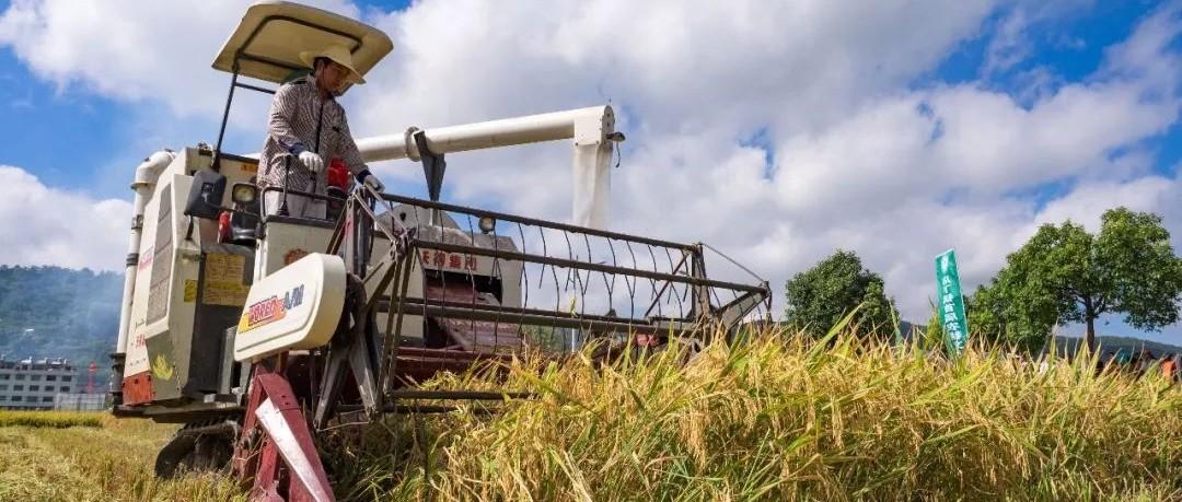从人力耕作到机械化!聊一聊福鼎70年的农耕变革~