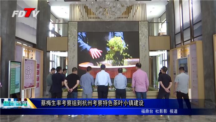 蔡梅生率考察组到杭州考察特色茶叶小镇建设