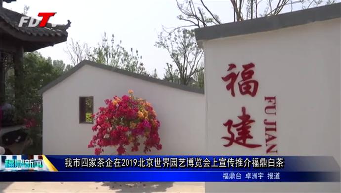 我市四家茶企在2019北京世界园艺博览会上宣传推介福鼎白茶