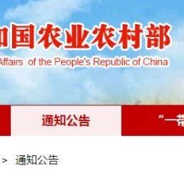 福鼎白茶入围第二批中国全球重要农业文化遗产预备名单