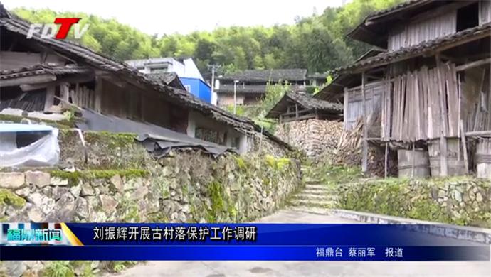 刘振辉开展古村落保护工作调研
