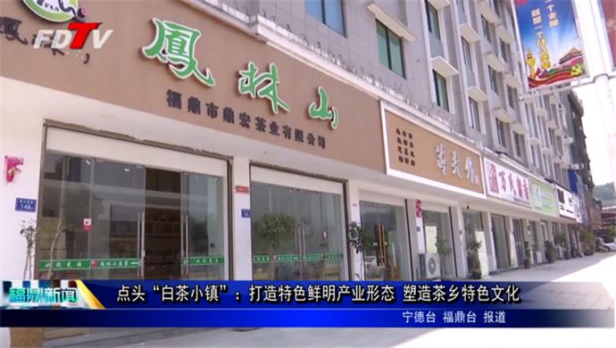 """点头""""白茶小镇"""":打造特色鲜明产业形态 塑造茶乡特色文化"""