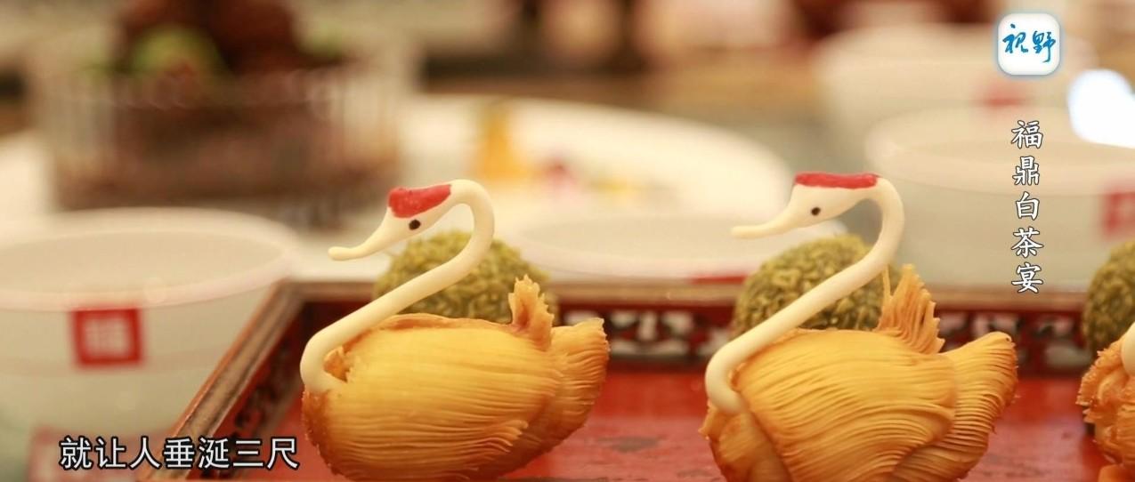 【视野】福鼎白茶宴