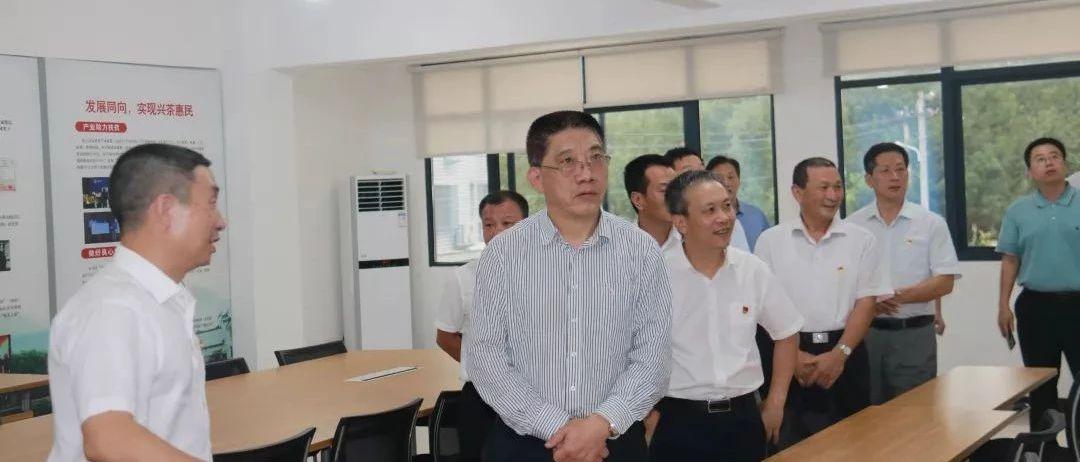 省委第九巡回指导组莅鼎调研