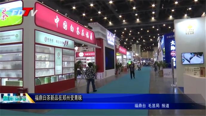 福鼎白茶新品在郑州受青睐