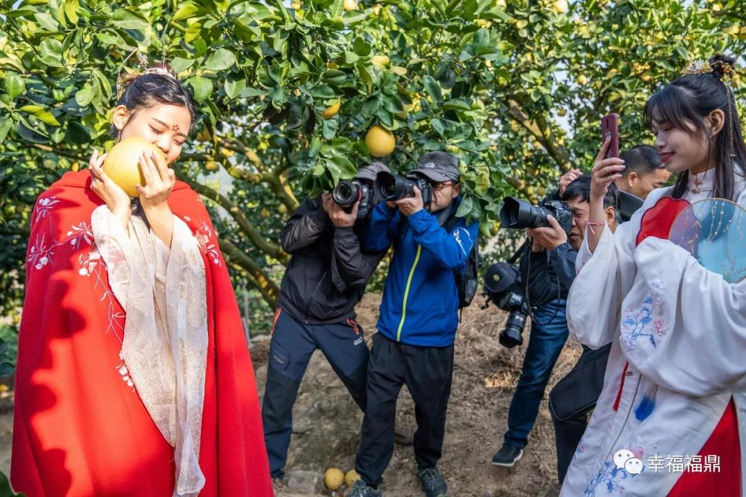 """照片会""""说话"""",摄影家用镜头定格""""四季柚之乡""""的美好瞬间"""