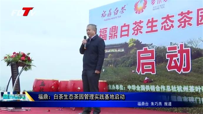 福鼎:白茶生态茶园管理实践基地启动