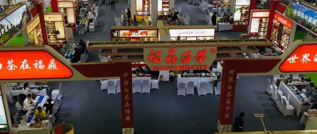 福鼎白茶征战深圳茶博会,拿下1.2亿元订单!