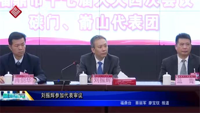 刘振辉参加代表审议