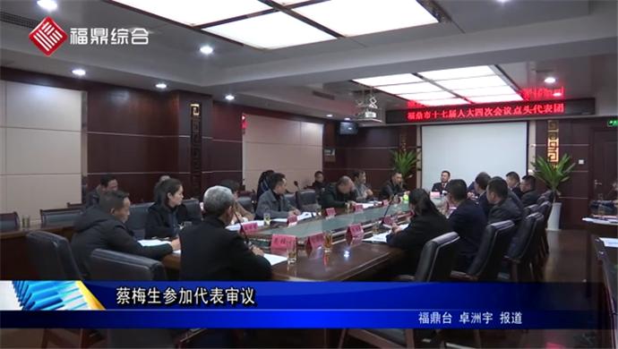 蔡梅生参加代表审议