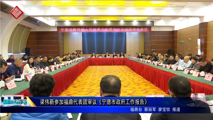 梁伟新参加福鼎代表团审议《宁德市政府工作报告》