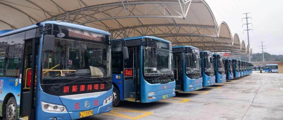 """城区公交逐步""""解禁"""",明日起恢复3条公交线路,乘坐要注意……"""