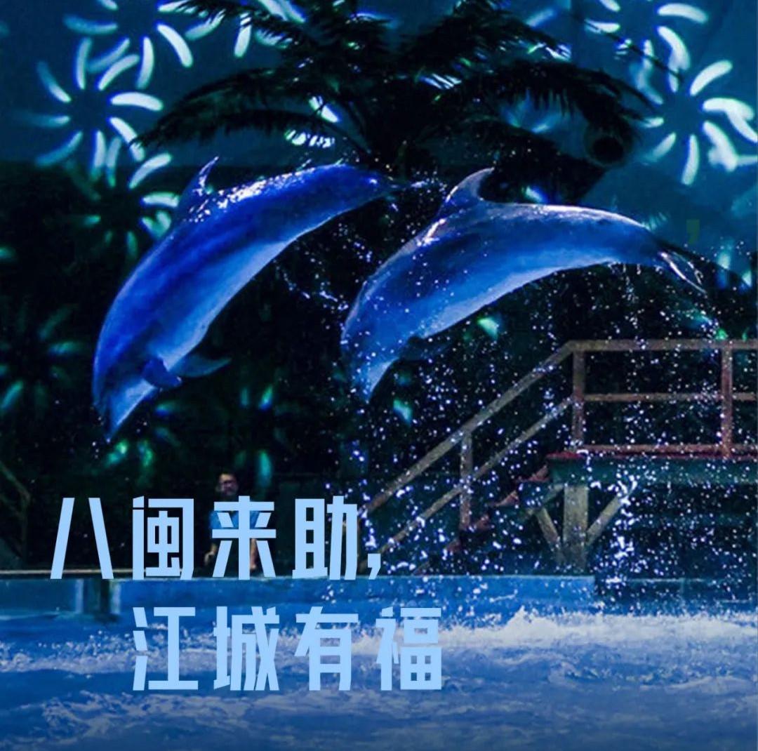 31张武汉城市名片,致谢每一位拼过命的英雄,咱们福建的名片是——