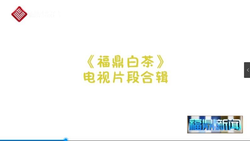 【短视频】《福鼎白茶这么好!他们都这么说…》