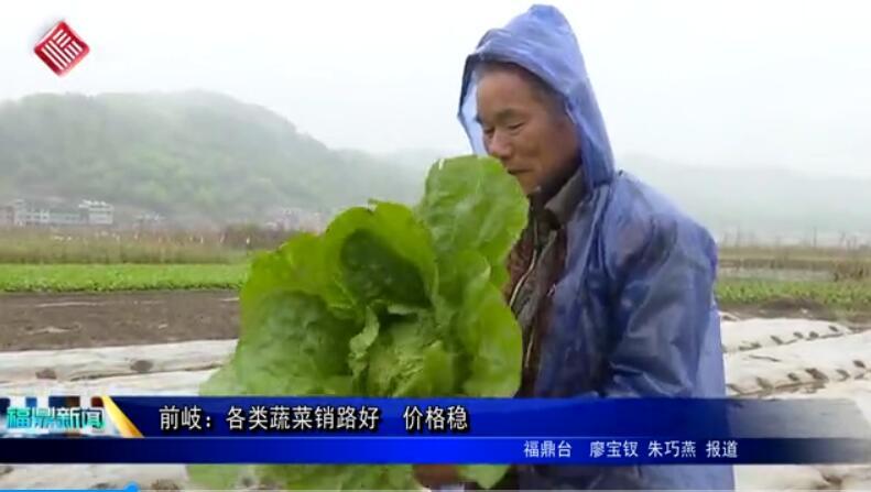 前岐:各类蔬菜销路好 价格稳