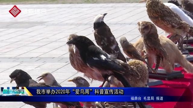 """我市举办2020年""""爱鸟周""""科普宣传活动"""
