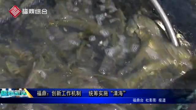 """福鼎:创新工作机制  统筹实施""""清海"""""""