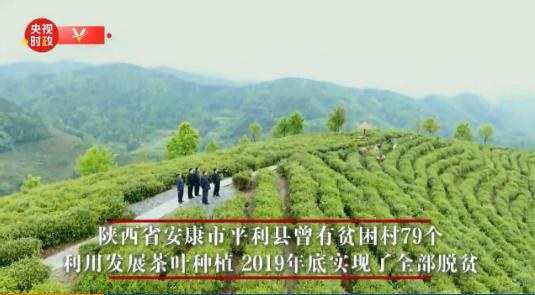 独家视频丨习近平考察调研陕西省安康市平利县 祝父老乡亲们的生活安康平利