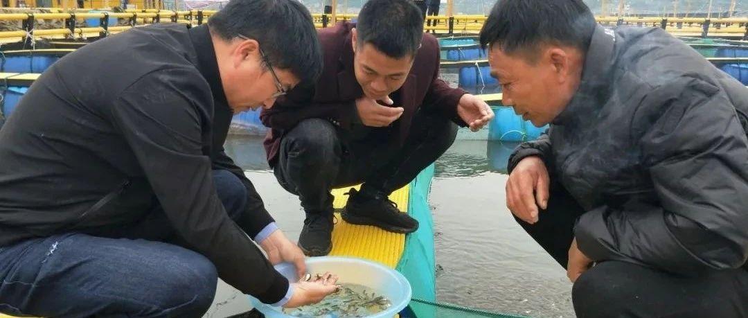 """耕海牧渔,走向深蓝,福鼎""""海洋工厂""""不断壮大"""