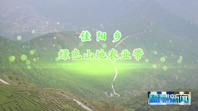 佳阳:绿色山地农业带