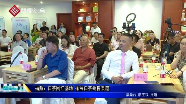 福鼎:白茶网红基地 拓展白茶销售渠道