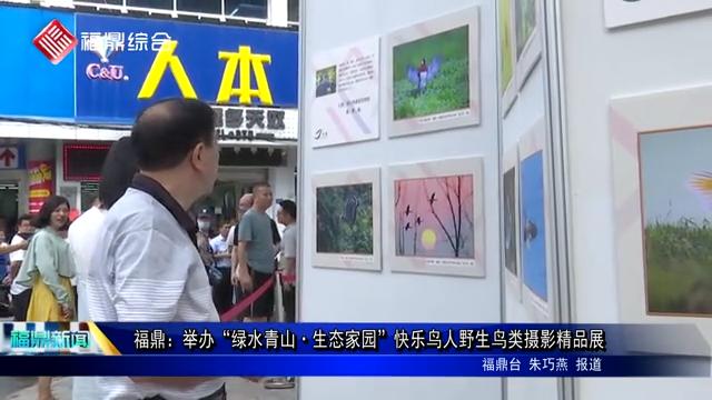 """福鼎:举办""""绿水青山·生态家园""""快乐鸟人野生鸟类摄影精品展"""