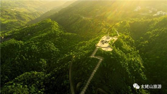 太姥山•白茶山 | 缪华:太姥种茶