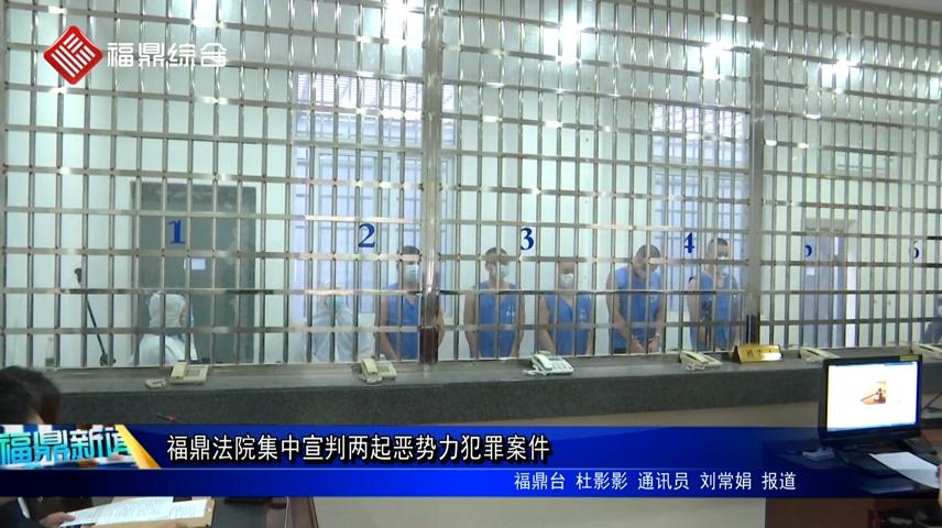 福鼎法院集中宣判两起恶势力犯罪案件