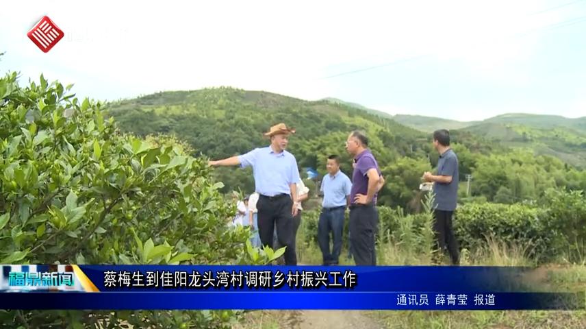 蔡梅生到佳阳龙头湾村调研乡村振兴工作