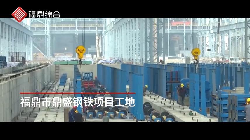 鼎盛钢铁项目加速度&小白鹭海滨休闲胜地