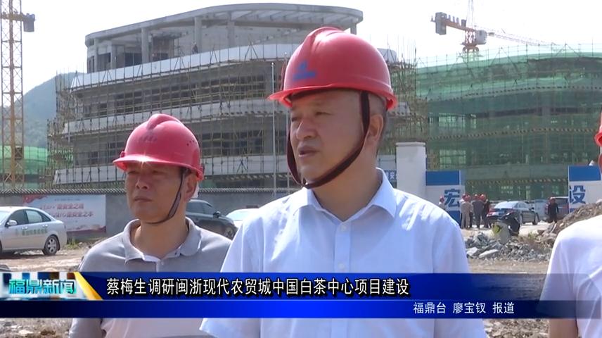 蔡梅生调研闽浙现代农贸城中国白茶中心项目建设