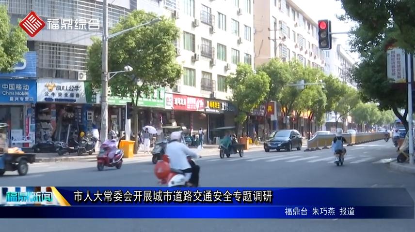 市人大常委会开展城市道路交通安全专题调研