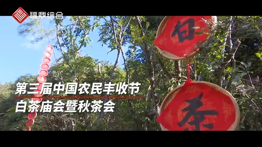 【短视频】--1、第三届农民丰收节白茶庙会2、美丽桐山溪